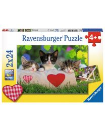 Sleepy Kittens, 2 x 24 Piece Puzzles