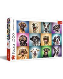 Funny Dog Portraits, 1000 Piece Puzzle
