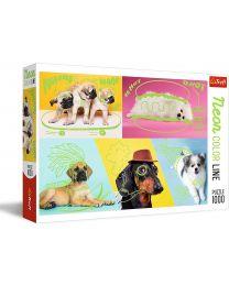 Far Out Dogs, Neon Color Line, 1000 Piece Puzzle