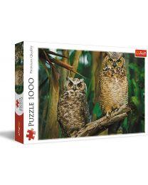Owls, 1000 Piece Puzzle