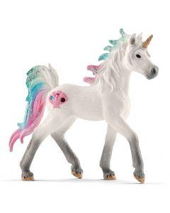 Sea Unicorn Foal
